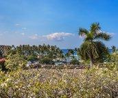 Very short walk to the Kahaluu Beach Park