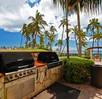 Two of the Four Barbecue Grills on Property