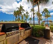 Tow of the Four Barbecue Grills on the the Property