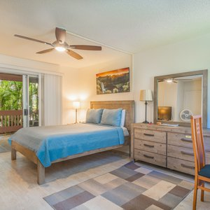 Large living area with great Queen bed and outdoor lanai! Flat screen TV, dining table with kitchenette and walk in shower.