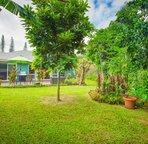 Green Hawaiian landscaping