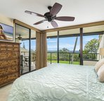 Master bedroom offers lanai access