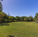 Expansive tropical landscape: banana, papaya, lime and mango trees!