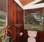 Master Bath with Cedar Walls