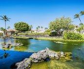 Common Area Lagoon