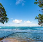 30 minutes to Princeville and about 40 to Poipu beach, this is the best centrally located condo on Kauai.