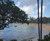 This beach is just an 8 min walk from the condo, or just drive, there is parking