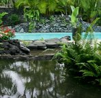 Keiki Ponds - Wading Pool great for little ones