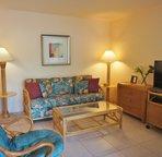 Living Area Includes A Sofa