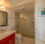 bathroom includes walk-in shower