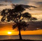"Sunset at ""Secret"" Beach"