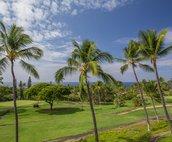 Ocean and Golf Course Views