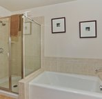 Walk-in Shower in the Master Bath
