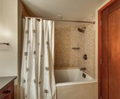 Second Bathroom Tub