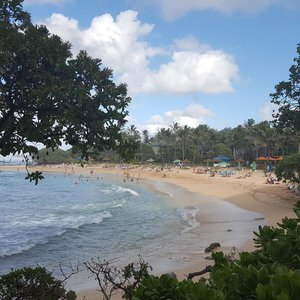 Nearby Turtle Bay Beach & Resort. Within walking distance.
