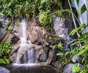 Waterfall in Complex