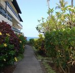Walkway to Oceanfront Pool